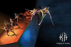 Cirque du Soleil оштрафовали на $25 тыс. за гибель артистки