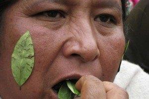 Судья в Боливии гадает на кокаине