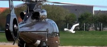 Лебедь влюбился в вертолет
