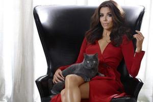 Ева Лонгория стала лицом кошачьей еды