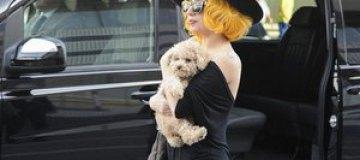 Леди Гага примирилась с бывшей помощницей