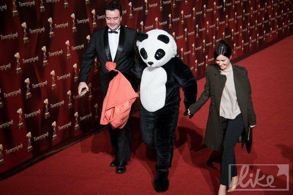 ТЕТовская панда, ставшая звездой Интернета после выборов