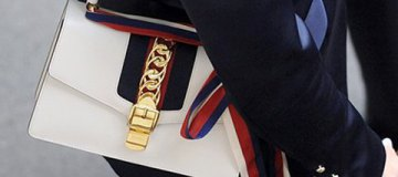 Депутат фракции Тимошенко пришла в Раду с сумкой почти за $3 тыс.