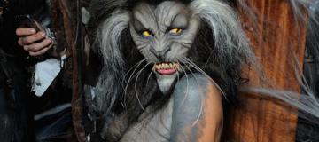 Хэллоуин: Хайди Клум в жутком костюме оборотня, а Куриленко и Шейк - в сексапильных нарядах
