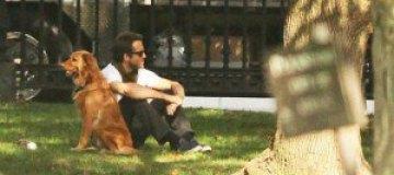 Райан Рейнольдс выгулял любимого пса