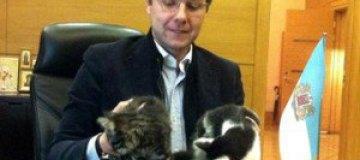 В рижской думе будут заседать двое котов