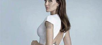 Анджелина Джоли решила стать политиком