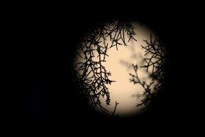 Двухкилограммовый кусок Луны уйдет с молотка