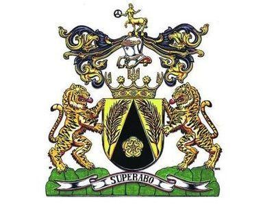 Фамильный герб Януковичей