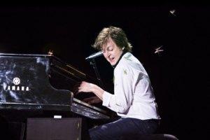 Во время концерта Пола Маккартни атаковала саранча