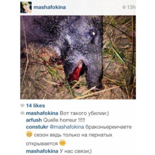 Маша Фокина похвасталась убитым кабаном