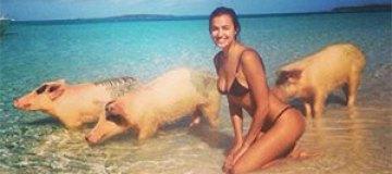 Ирина Шейк снялась в бикини со свиньями