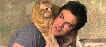Люди-кошки: 10 звёзд, которые обожают своих котов