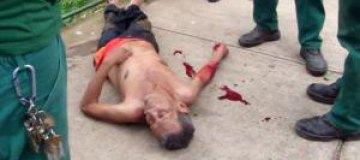 Макаки атаковали пьяного посетителя зоопарка
