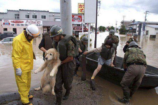Японские солдаты спасают женщину с собакой в поселке после наводнения после тайфуна Роке