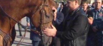 Чеченский лидер Рамзан Кадыров обзавелся табуном лошадей