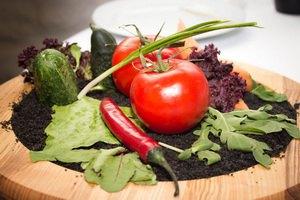 В ресторане Скрипки накормят съедобной землей и бобром