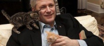 Премьер-министр Канады выбрал имя для нового котенка