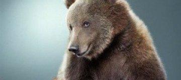 Медведи – тоже люди