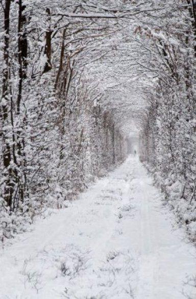 Туннель Любви на Ровенщине (пгт Клевань)