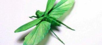 Оригами-насекомые Брайана Чана