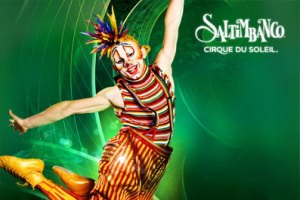 """Участники Cirque du Soleil: """"Риск – это часть нашей профессии"""""""