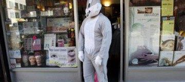 Американцу запретили ходить в костюме зайца