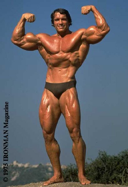 Примерно так будут выглядеть статуи Шварценеггера