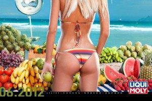 Liqui Moly представила календарь на 2012 год