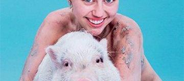 Голая Майли Сайрус появилась на обложке глянца верхом на свинье