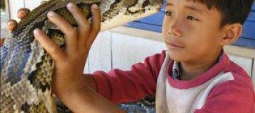 Камбоджийский мальчик держит дома 5-метровую змею
